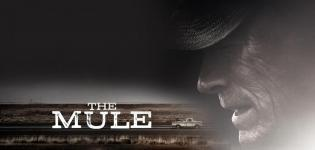 Il-corriere-The-mule-Canale-5