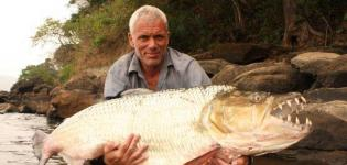 River-Monsters-1^TV-Dmax