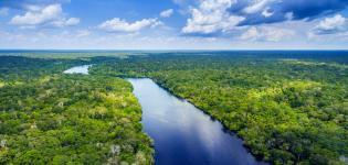 Amazzonia-selvaggia-Focus