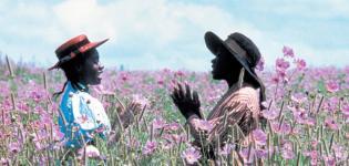 Il-colore-viola-Iris