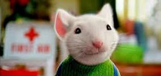 Stuart-Little.-Un-topolino-in...-Paramount