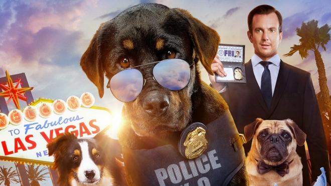 Show-dogs---Entriamo-in-scena-Rai-1