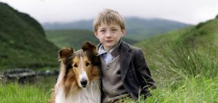 Lassie-Rai-Movie